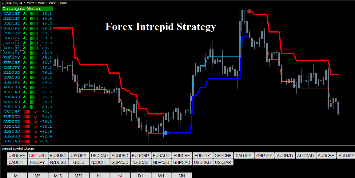 User Guide [Forex Software]