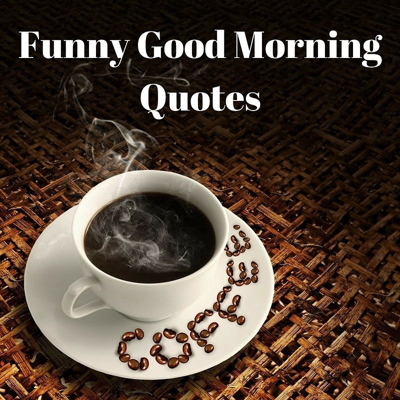 Funny Good Morning Quotes Laffgaff Home Of Laughter