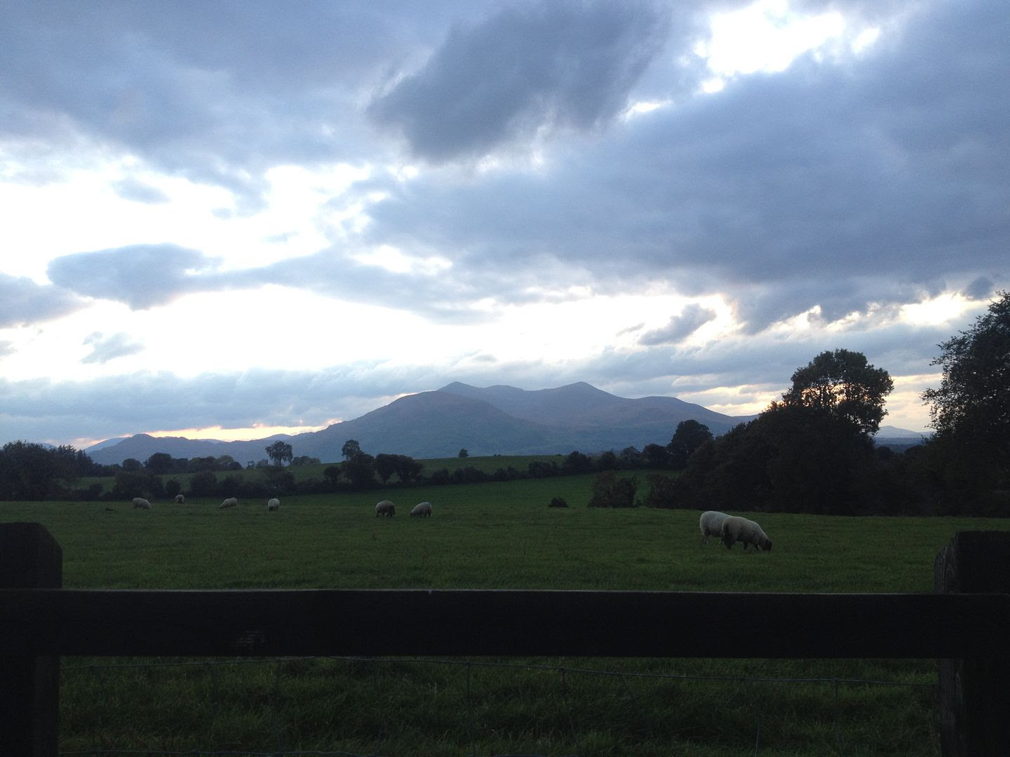 Killarney, Ireland photo 2015-10-14 18.33.06_zpsbbpnw1ry.jpg