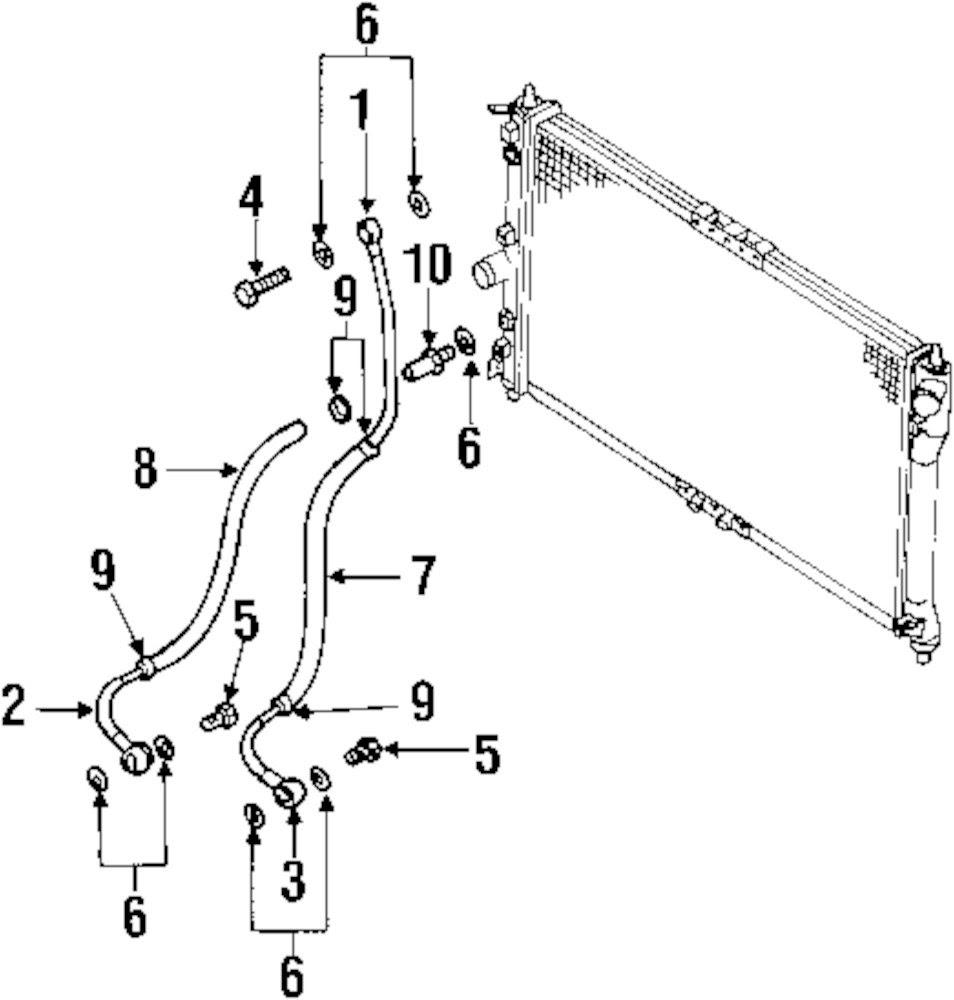 Wiring Diagram Database  3400 Sfi Engine Cooling System