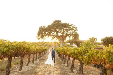 Central Coast Vineyard Wedding Venues   Mason & Megan