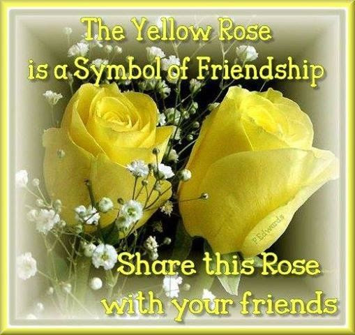 Friendship Rose Quote Pictures Photos And Images For Facebook