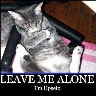 Leave Me Alone Funny Quote Quote Number 609137 Picture Quotes