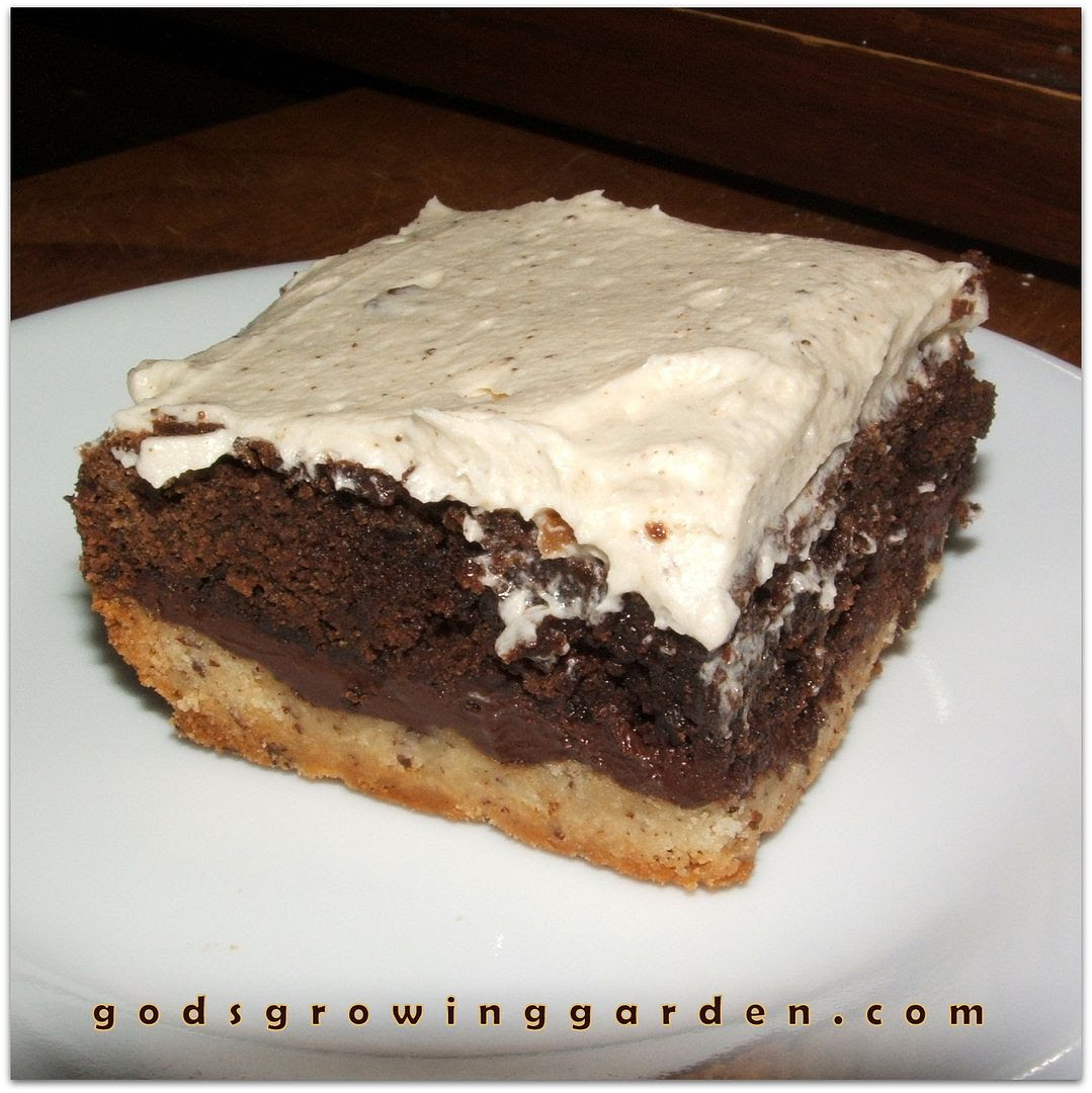 Brownie Pie Squares by Angie Ouellette-Tower for godsgrowinggarden.com photo 014_zpsbb9c95ea.jpg