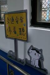 貓咪停看聽