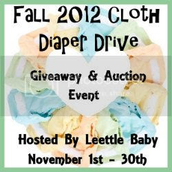 Fall 2012 Cloth Diaper Drive