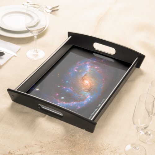 Barred Spiral Galaxy NGC 1672 Service Trays