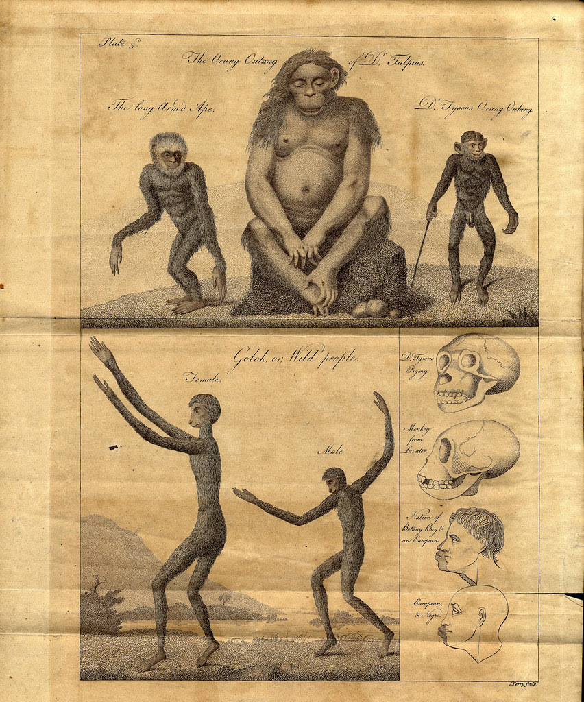 An Account of the Regular Gradation in Man, and in Different Animals and Vegetables; and from the Former to the Latter 1795