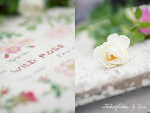 Wild Rose (Kazuko Aoki)