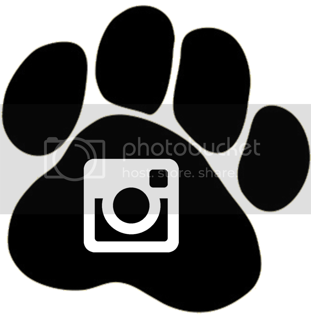 photo bailey blushes icon instagram_zps1zflqcdw.png