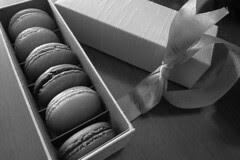 Sinfully - Macaron Set