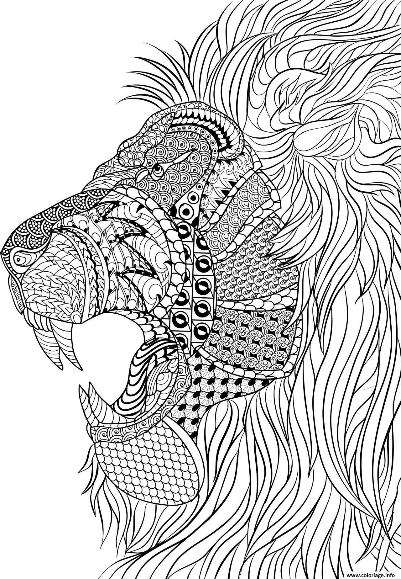 Coloriage Lion Adulte Anti Stress Dessin   Imprimer