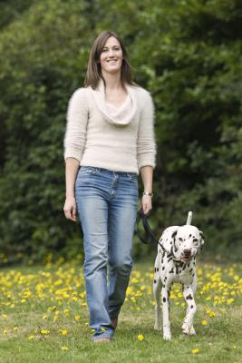 Your dog should walk at your pace while out on a walk.