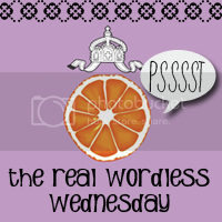 The Real Wordless Wednesday