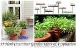 35 Herb Container Gardens ~ Pots & Planters {Saturday Inspiration ...