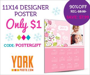 11X14 Custom Photo Poster - Only $1 - Save $7.49!