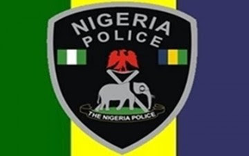 Image result for Nigeria police logo