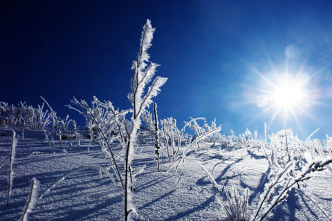 http://gracemagazine.files.wordpress.com/2007/12/winter480.jpg