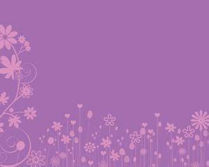background pink muda polos koleksi gambar hd