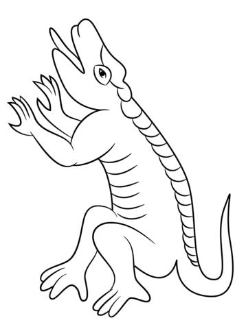 Dibujo De Cuetzpalin Lagartija Del Calendario Azteca Para Colorear