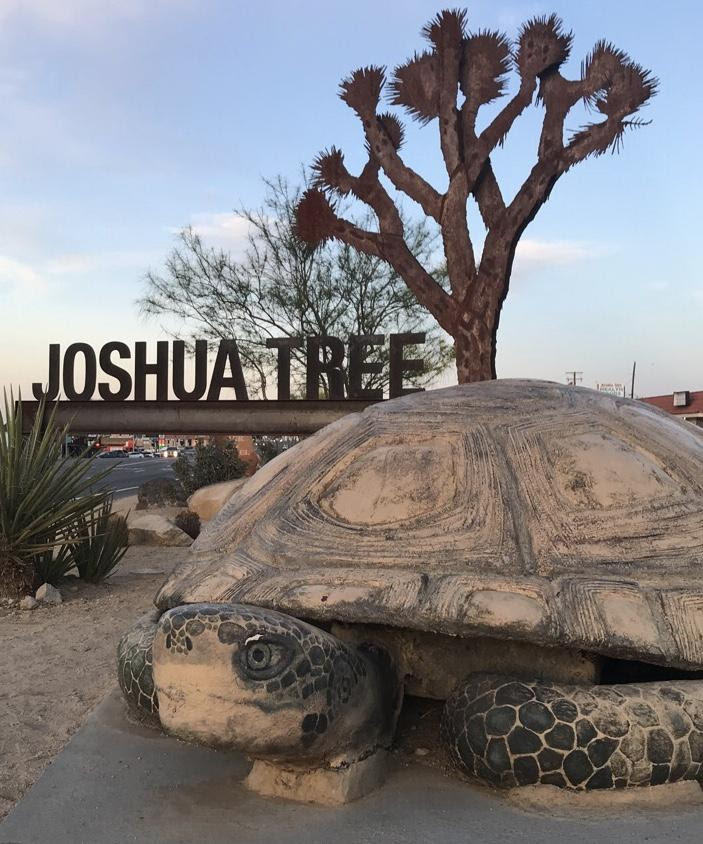 Amid Festivals And Pricy Housing Joshua Tree Residents Conflicted