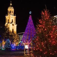 Lights, lights and more lights! Christmas!