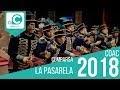 La Pasarela (Comparsa). COAC 2018