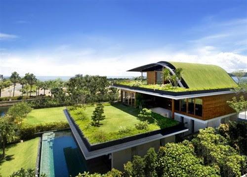 Những ngôi nhà xanh độc đáo trên thế giới | ảnh 11