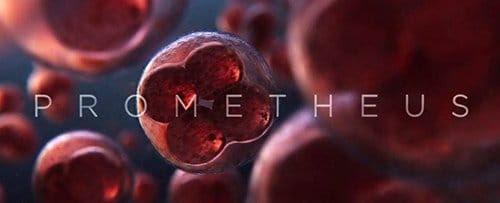 Tela do filme de título mostra uma única célula se multiplicar. Isto é como a vida humana começou na Terra.