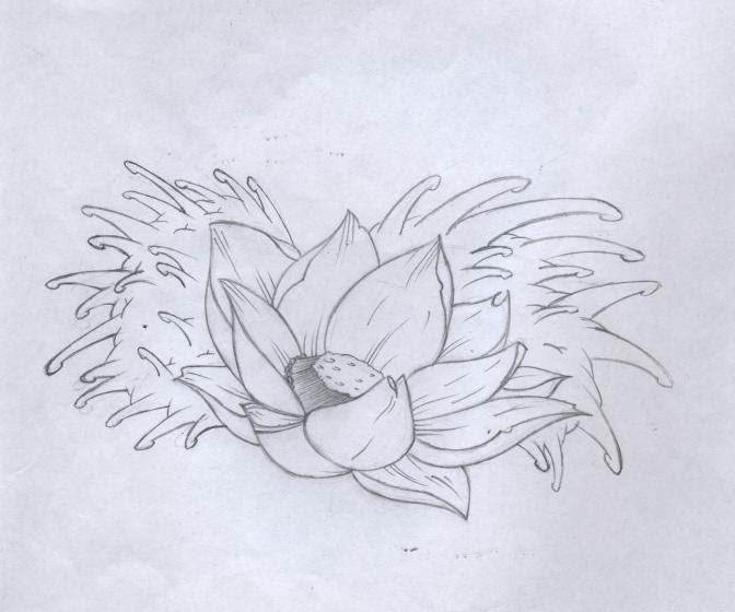 Japanese Lotus Flower Drawing At Getdrawingscom Free For Personal