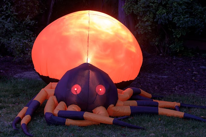 TREND ESSENCE: New York home's giant Halloween spider décor goes viral: 'That's how you keep kids away'