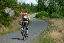Bug-Out-Vehicle-Mountain-Bike