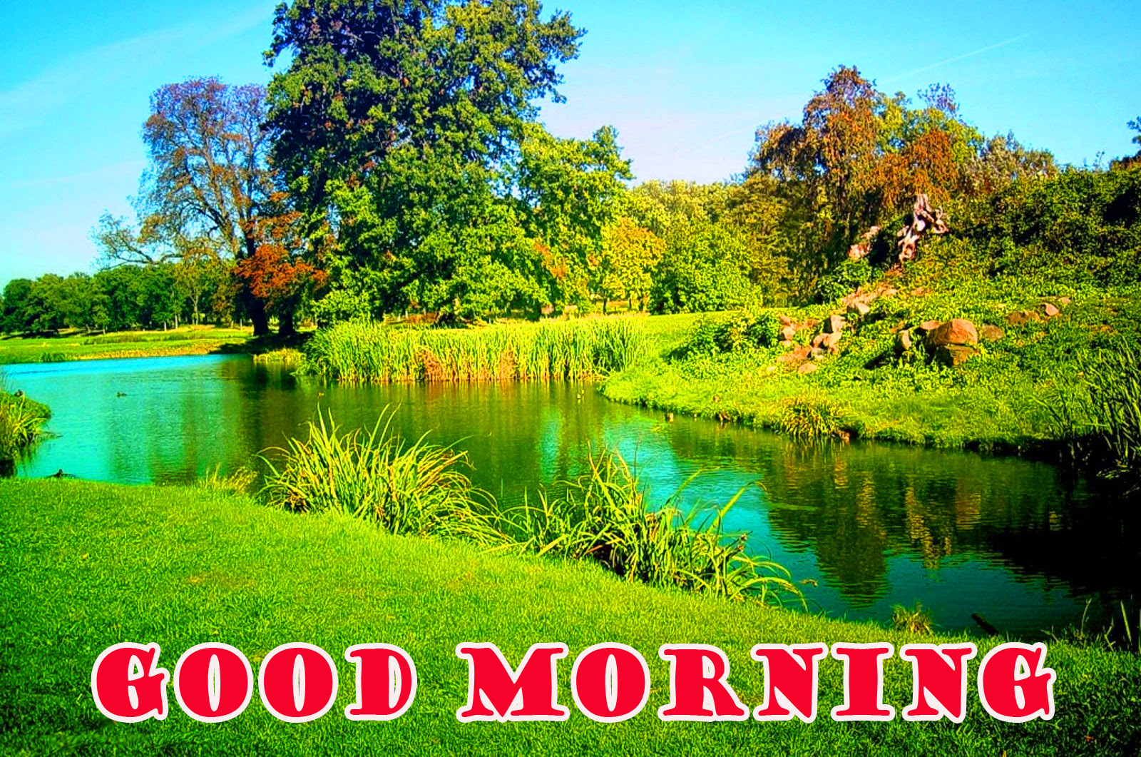 Scenery Image Good Morning Images With Nature Pic