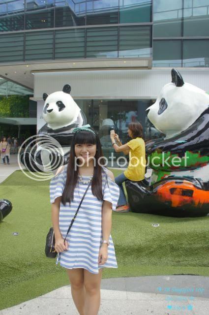 photo 11_zpse01fb5b0.jpg