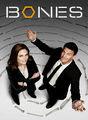 Temporada 9 | filmes-netflix.blogspot.com