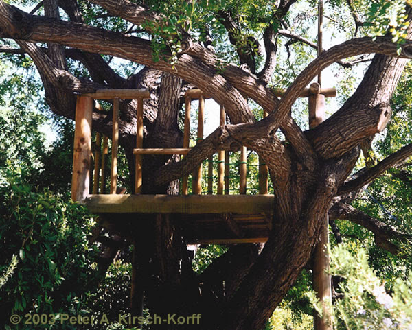 Los Angeles Wood Tree Houses, Playhouses, Play Forts & Play ...