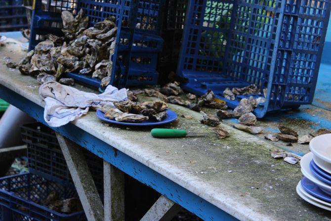 photo 17-Bretagne finistere riec sur belon huitres_zpsxk0uzfm8.jpg