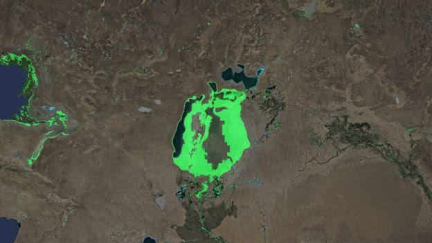bahari ya Aral