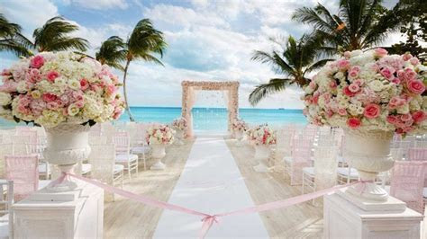 Wedding Packages   Dominican Expert