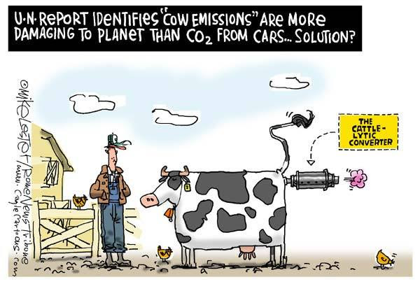 Image result for cow farts cartoons