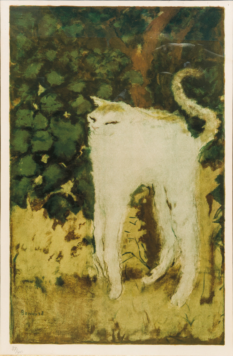 amare-habeo:  Pierre Bonnard (1867-1947) The Cat (Le chat), N/D