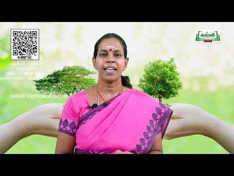 11th Botany வகைப்பாட்டியல் (ம) குழுமப்பரிணாம வகைப்பாட்டியல் அலகு 5  பகுதி5  Kalvi TV