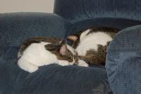 Oscar-Whitey-2009-Aug-19.jpg