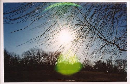 Green sunspots.