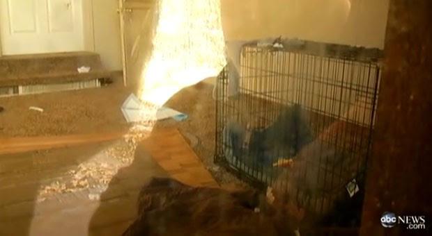 Menina de 1 ano e meio foi encontrada presa em gaiola enquanto pai dormia (Foto: Reprodução)