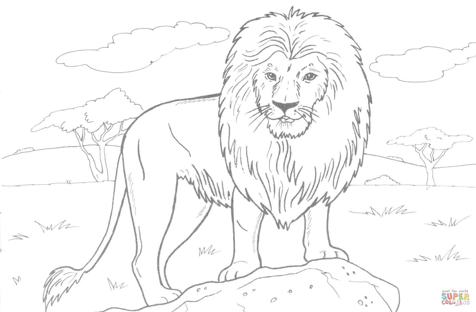 African Lion coloring page | Free Printable Coloring Pages