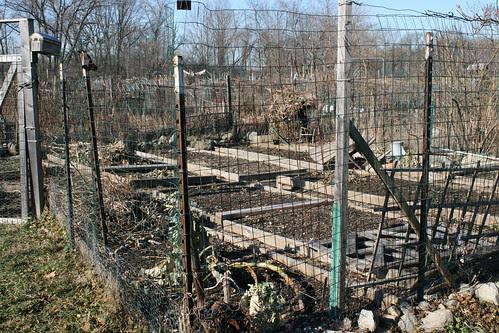 garden plot 094
