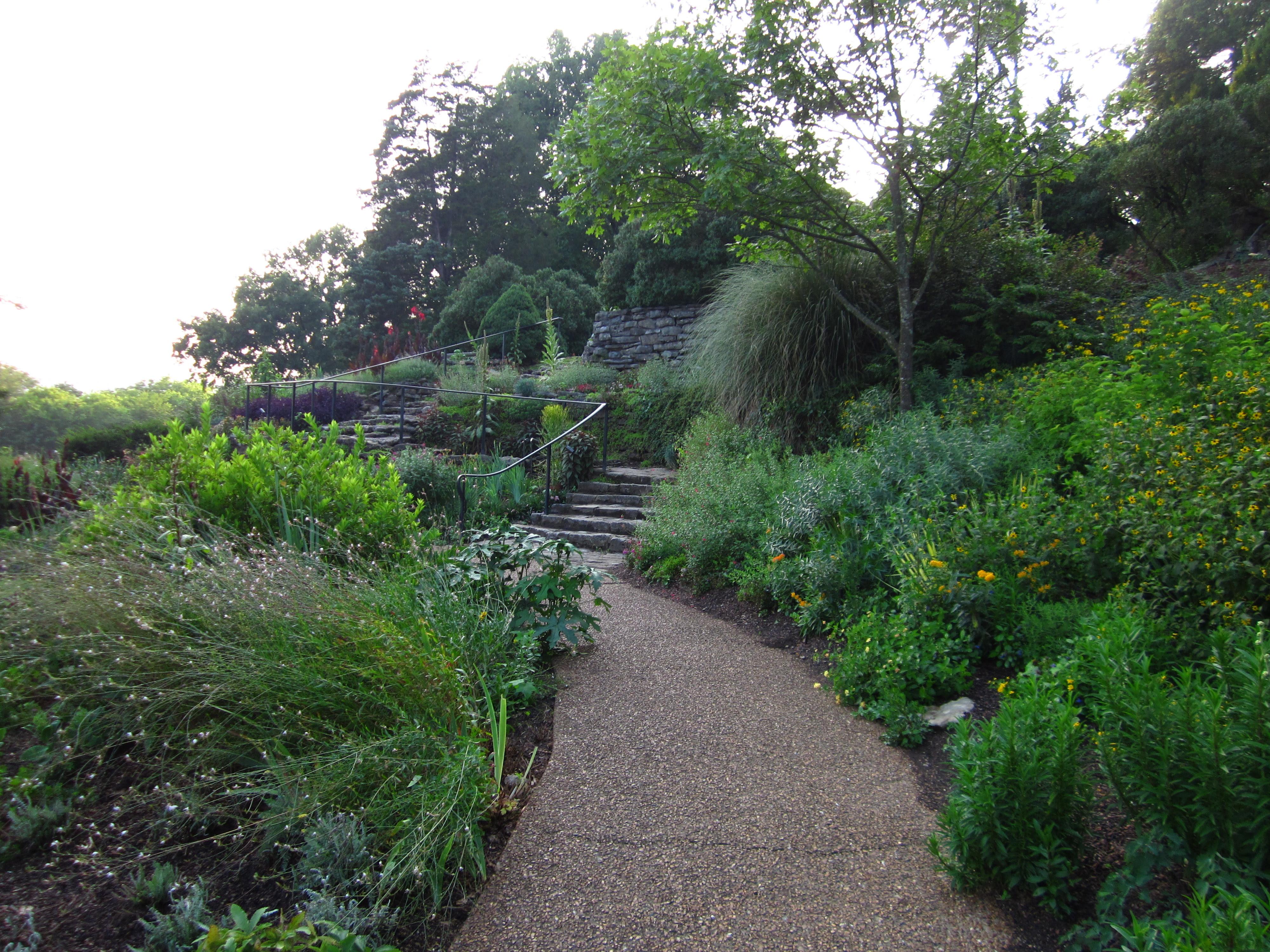 Amanda Plante S Garden Guide