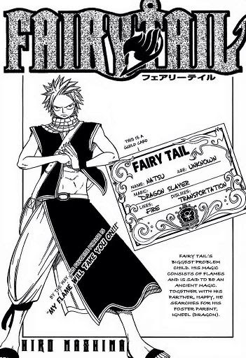 Fairy Tail Profile Wiki Anime Amino