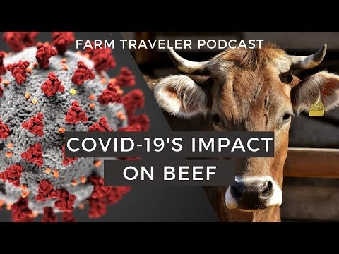 COVID-19 Impacts on the Beef Trade - The JamsPortal